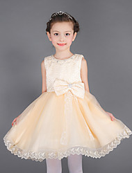 A-line Knee-length Flower Girl Dress - Cotton / Lace / Organza Sleeveless Jewel with