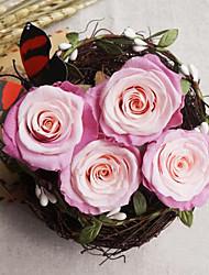 девять розовые розы / коробка биколор сохранились свежие цветы