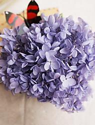 лаванды гортензии сохранились свежие цветы