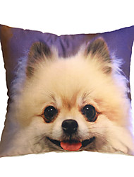 3D Design Pint Dog Japanese Spitz Decorative Throw Pillow Case Cushion Cover for Sofa Home Decor Polyester Soft Material