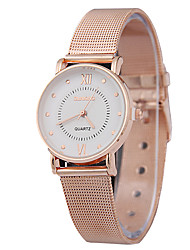 Women's Fashion Ultrathin Belt Rose Gold Quartz Simple Couple's Romance Time Rome Venation Watches