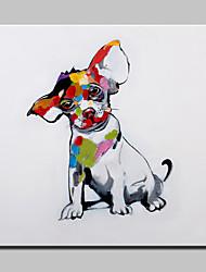 большая картина маслом современный абстрактный животное собака картина ручной росписью холст с растянутыми кадра