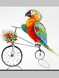 Large Hand Painted Cycling For The Parrot Animal Oil Painting On Canvas Wall Art For Home Decor With Frame 100x100cm