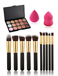 10pcs Makeup Brushes Set+15 Colors Concealer Palette+Makeup Sponge Water Swellable