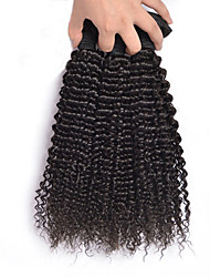 "3Pc/Lot 12""-26"" Malaysia Virgin Hair Kinky Curly Human Hair Extensions 100% Unprocessed Malaysia Remy Hair Weaves"
