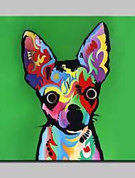Large Oil Painting Hand Painted Colored Dog Animal Canvas Pictures Wall Art For Home Decor With Frame 100x100cm