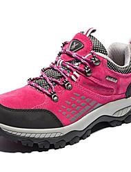 Baskets Chaussures de Randonnée Chaussures de Course Chaussures de montagne Femme Antidérapant Coussin Antiusure Etanche Respirable