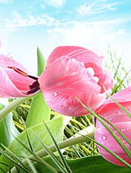 JAMMORY Mural Art Deco Wallpaper Contemporary Wall Covering,Canvas Yes Large Mural Fresh Pink Tulips