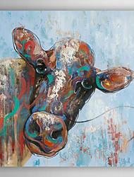 óleo pintados à mão animais pintura curioso vaca com moldura esticada