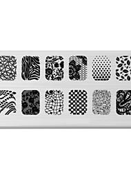 BlueZOO Rectangle Printing Nail Art Stamping (C-031)