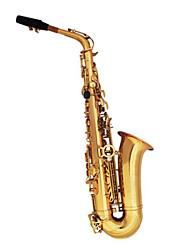 sax alto e instrumento plana