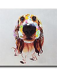 Pintados à mão Animal Pinturas a óleo,Estilo / Moderno / Clássico / Tradicional / Realismo / Mediterrêneo / Pastoril / Estilo Europeu1