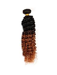 Ombre Brasilianisches Haar Kinky Curly 1 Stück Haar webt