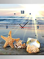 E-HOME® Sea Shells On The Beach Clock in Canvas 1pcs