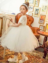 Tea-length Flower Girl Dress - Cotton Short Sleeve Jewel with