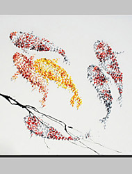 Hand Painted Fish Oil Painting On Canvas Modern Abstract Wall Art Picture With Stretched Frame Ready To Hang
