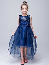 A-line Asymmetrical Flower Girl Dress - Tulle / Sequined Sleeveless Jewel with