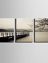 E-HOME® Stretched Canvas Art Lake View Decoration Painting  Set Of 3
