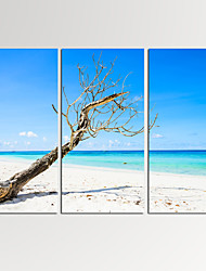 VISUAL STAR®3 Panel Seascape Photos Print on Canvas Wall Decoration Ocean Canvas Artwork Ready to Hang