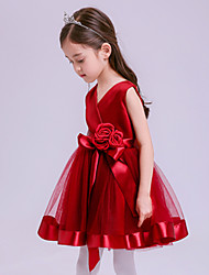 A-line Short / Mini Flower Girl Dress - Tulle Sleeveless V-neck with