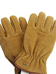 Leather Two-Story Ice Cold 3M Cotton Insulation LNG Cold Storage Industrial Gloves