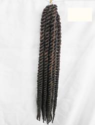 n ° 4 La Havane Tresses Twist Extensions de cheveux 24inch Kanekalon 2 Brin 75-80g/pcs gramme Braids Hair
