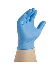Disposable Gloves (100 / Box)