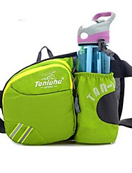 Unisex Waist Bag Nylon Sports Outdoor Fuchsia Ruby Blue Light Blue Light Green