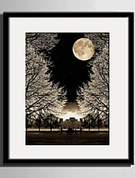 E-HOME® Framed Canvas Art, The Tree Below The Moon Framed Canvas Print One Pcs