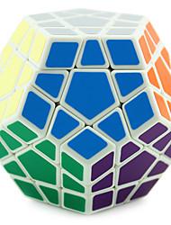 Shengshou® Smooth Speed Cube Megaminx Professional Level Magic Cube Black / White Plastic