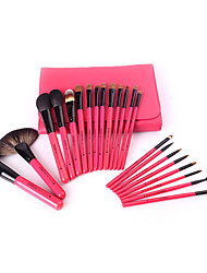 22 Makeup Brushes Set Goat Hair Professional / Travel / Full Coverage /Wood Face / Eye / Lip Others With Cosmetic Bag