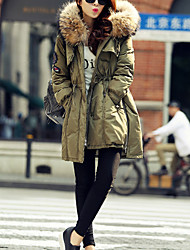 Women's Long Down Coat,Simple / Street chic Going out / Casual/Daily Solid-Polyester White Duck Down Long Sleeve Hooded Blue / Green