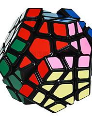 / Smooth Speed Cube Megaminx / Magic Cube Rainbow ABS