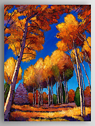 Oil Painting Landscape Hand Painted Canvas Painting with Stretched Framed Ready to Hang