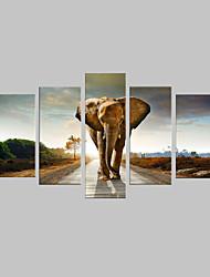 e-FOYER toile tendue art de marcher sur la route de l'éléphant décoratif ensemble de cinq de peinture