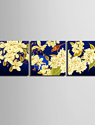E-HOME® Stretched Canvas Art Flowers And Birds Decoration Painting  Set of 3