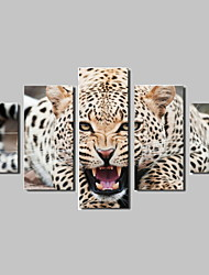 5 Panel Framed Art Leopard Wall Print Painting