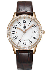 Victoria Rose Golden Case White Dial Brown Leather Strap Watch