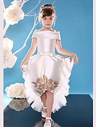 Ball Gown Asymmetrical Flower Girl Dress - Lace / Satin Sleeveless Off-the-shoulder with Lace / Sash / Ribbon