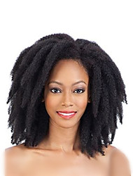 African Black Hair Afro Kinky Braids