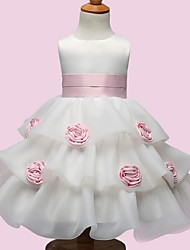 Ball Gown Knee-length Flower Girl Dress - Organza Sleeveless Jewel with Bow(s) / Flower(s)