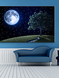 E-HOME® Stretched LED Canvas Print Art A Tree Under The Moon LED Flashing Optical Fiber Print One Pcs