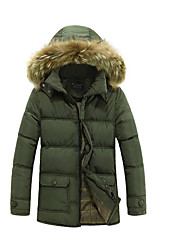 Men's Regular Down Coat,Simple Casual/Daily Solid-Polyester Polypropylene Long Sleeve Hooded Black / Green