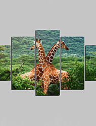 Unframed Canvas Print Animal Modern,Five Panels Canvas Any Shape Print Wall Decor For Home Decoration