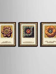 E-HOME® Framed Canvas Art,Flower Framed Canvas Print Set of 3