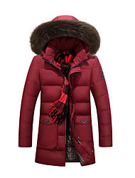 Men's Regular Down Coat,Simple Casual/Daily Solid-Polyester White Duck Down Long Sleeve Blue / Red