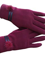 luvas touch-screen da mulher (roxo)