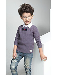 Boy's Casual/Daily Solid Sweater & CardiganWool Winter / Spring / Fall Purple