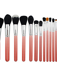 15 Makeup Brushes Set Synthetic Hair Professional / Portable Wood Eye / Lip Pink