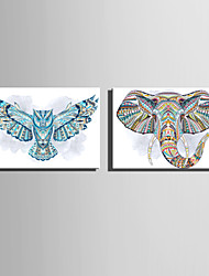 E-HOME Stretched Canvas Art Watercolor Animal Portraits Decoration Painting  Set Of 2